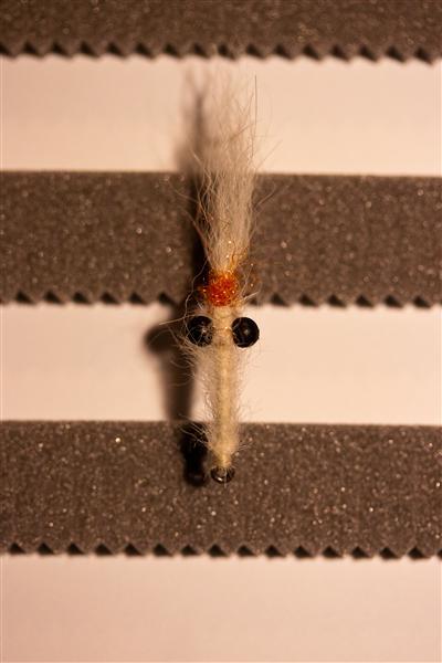 Die einzig angesagte Fliege: die Mysis