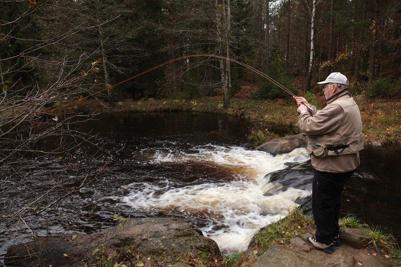 Harasjömåla: fast immer befischbar und spaß garantiert.