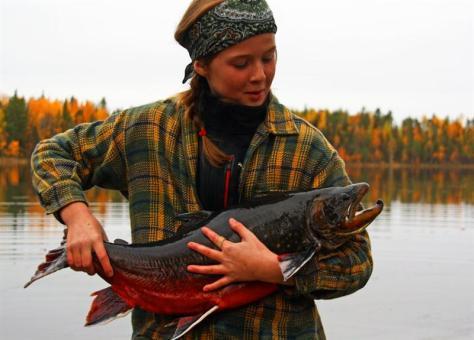 Trophäenfisch aus Schweden.