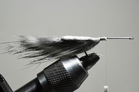 Den Haken (z.B. Gamakatsu F314) durch die Haut eines Zonkerstreifens stechen und mit der Haut auf dem Hakenschenkel fixieren.