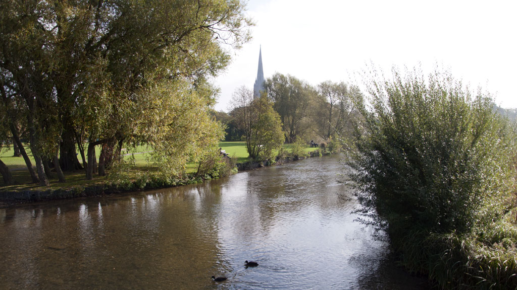 Salisbury, England, the cathedral and the river Avon  Bild: Paul Hermans