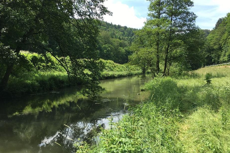 "Die Strecke ""Sachsenmühle"""