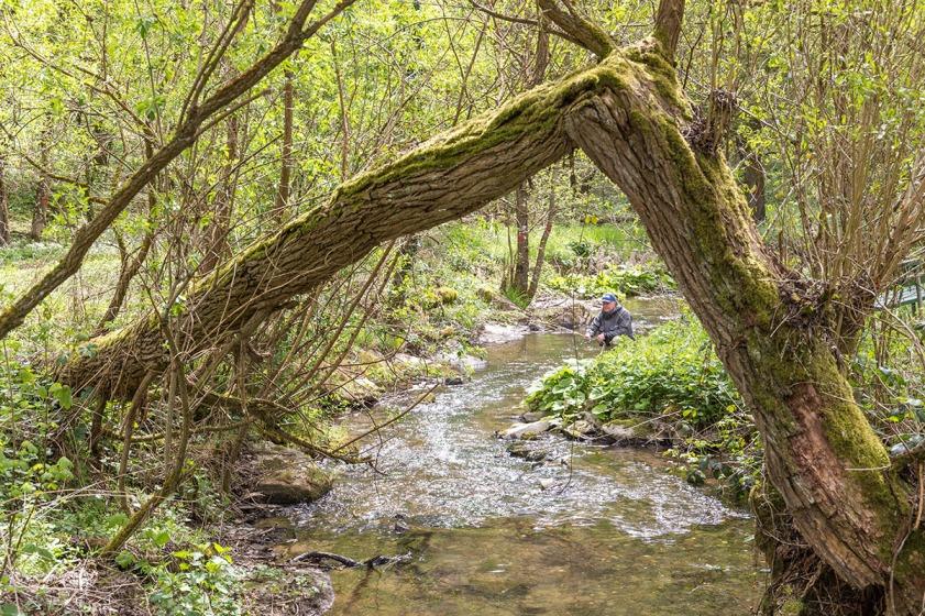 Die Natur sucht ihre eigenen, wenn auch manchmal merkwürdigen, Wege.